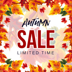 Colorful design of autumn sale promotion with vibrant leaves on white background