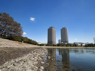 Fototapete - お台場海浜公園とタワーマンション