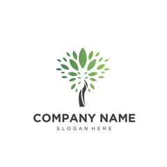 beauty tree logo icon vector
