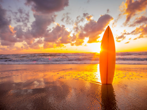 surfboard on the beach in sea shore at sunset time with beautiful light