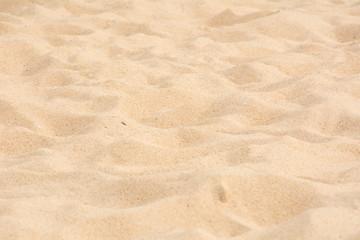 Wall Mural - Beautiful fine beach sand texture on the beach