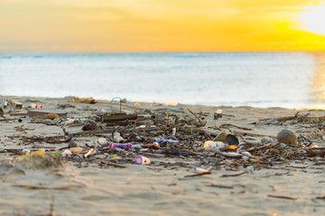 branch tree plastic rubbish dump on sand sea beach from deep sea after finish strong wind rain monsoon with horizon skyline in evening colorful twilight sunset time