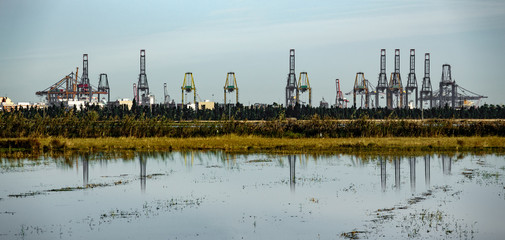 Huge industrial cranes in the horizon reflected to lake