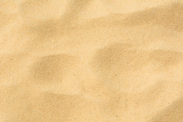 Wall Mural - Sand background smooth texture