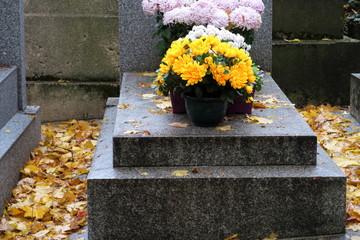Chrysanthèmes jaunes sur une tombe en pierre grise