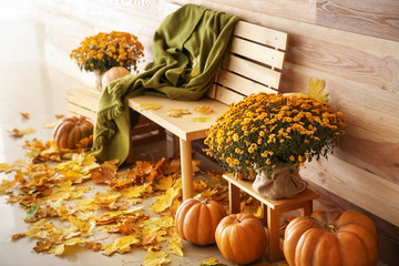 Beautiful autumn composition with bench, pumpkins and leaves near wooden wall
