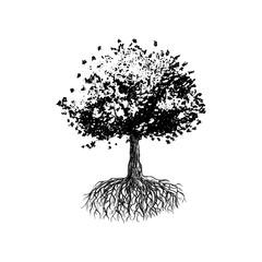 Tree of Life, Oak Tree Hand Drawn