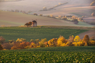 Landscape with waves hills, autumn fields with mill. South Moravia