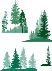 set of isolated green firs trees compositions