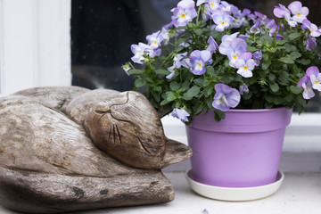 Close-up: Beautiful blue pansies in flower pot from garden center are in a windowsill next to a wooden image of sleeping cat. Concept: flowers of the autumn-winter season.