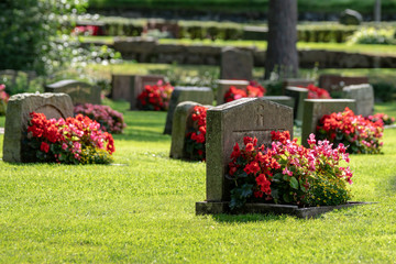 Grave stones with beautiful red and pink flowers in bright sunshine Fototapete