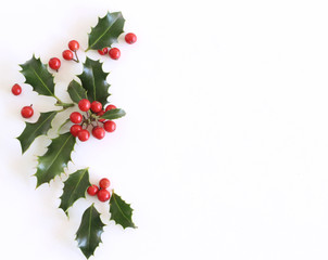 Christmas holly Ilex aquifolium isolated on white table background. Evergreen leaves with red berries. Empty space for holiday text. Decorative floral frame, web banner. Flat lay, top view.