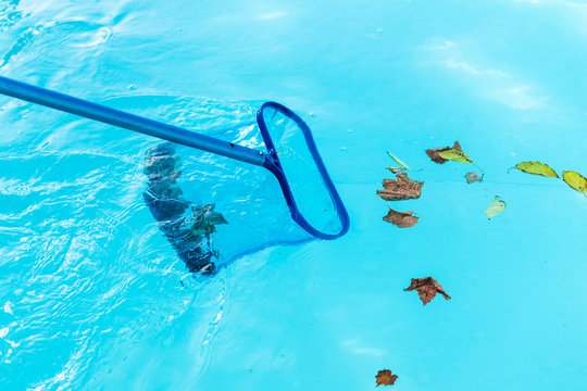 Cleaning pool collecting leafs
