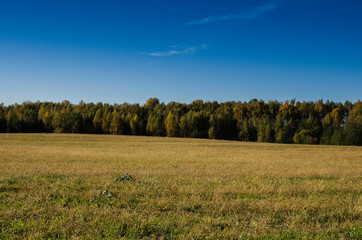 Rural nature in the farmland. Countryside natural landscape.