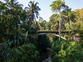 Indonesia, Bali, Ubud, Aerial view of bridge