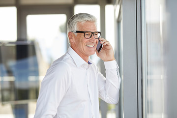 Successful businessman using smartphone, talking on the phone