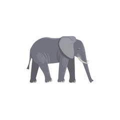 Vector illustration. Cartoon style icon of elephant. Cute character for different design.