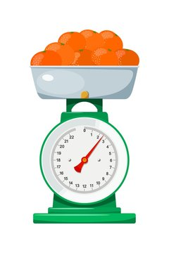 Domestic scales with mandarin on a white background. Kitchen measuring device. Vector illustration