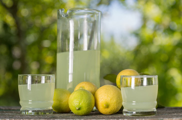 Foto op Canvas Sap lemon juice