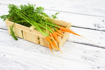 Baby carrot on wooden table in summer