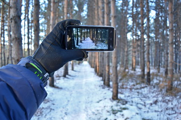mans hand in a black glove and a blue down jacket holding a smartphone on the screen which shows the surrounding coniferous snowy winter forest and track