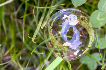 Beautiful soap bubble on the grass with reflection of the photographer