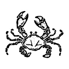 Vector vintage crab drawing. Hand drawn monochrome seafood illustration. Great for menu, poster or label. Vector illustration of a crab.