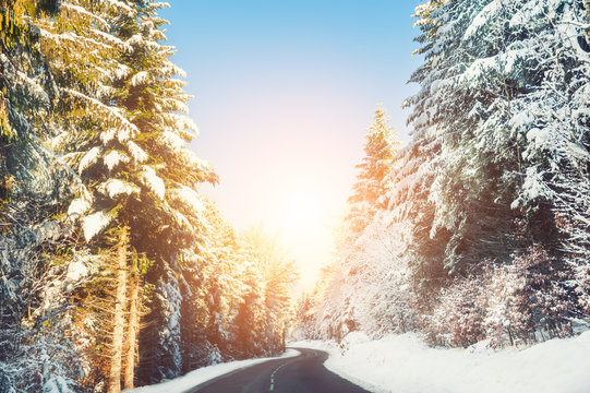 Winter road with snow-covered trees at sunset. Beautiful winter landscape