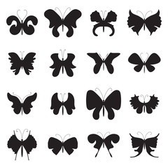 Vector Illustration of Summer Moth and Butterfly Icon