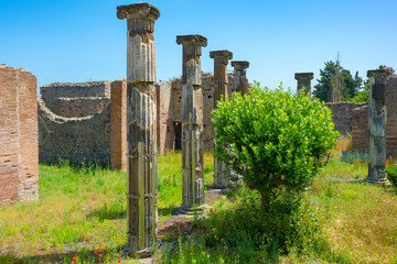 The excavated buildings, columns and ruins of the ancient city of Pompeii, City of Naples, Campania, Italy