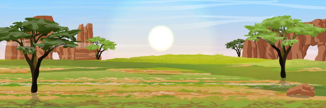 Australia. Dry grass, rocks and acacia trees. Wild nature of Australia. Realistic vector landscape.
