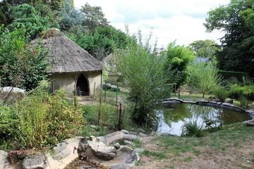 Parc du Thabor et sa roseraie - Rennes - Ile et Vilaine