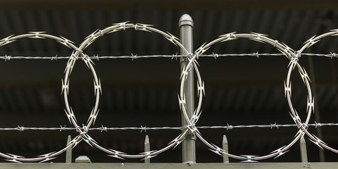 Close-up of barbed wire fencing, New York City, New York State, USA