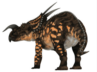 Einiosaurus Dinosaur Tail - Einiosaurus was a Ceratopsian herbivore dinosaur that lived during the Cretaceous Period in North America.
