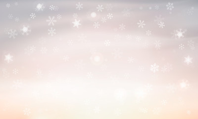 light background with snowflakes. Vector. winter background
