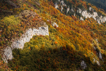 Mountain cliff in autumn