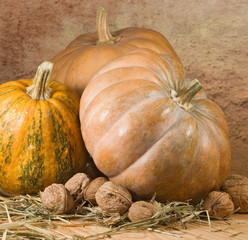 image of nuts and pumpkins closeup
