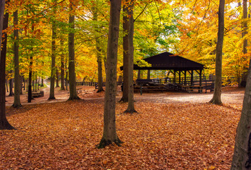 Park Pavilion in Fall