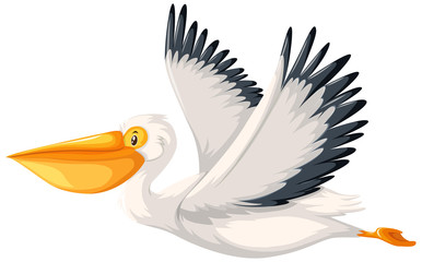 A pelican character on white background