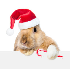 Rabbit in red santa hat looking over a signboard. Isolated on white background