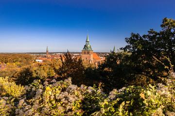 Lüneburg mit Michaeliskirche Blick vom Kalkberg