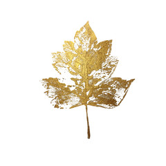 Gold leaf as design element isolated on white background. Leaf print with gold acrylic paint. Holiday decoration in style grunge