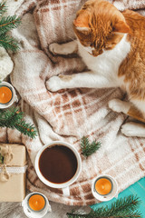 Christmas and New Year, autumn winter beautiful background, cozy home concept