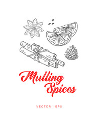 Hand drawn outline illustration mulling spices for hot wine. Anise star, sliced orange, cinnamon sticks. Winter holiday mulling wine spices..