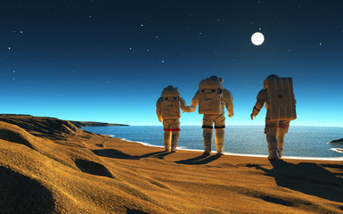 Wall Murals Nasa Astronauts near the sea.
