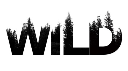 Wild word made from outdoor wilderness treetop lettering Wall mural