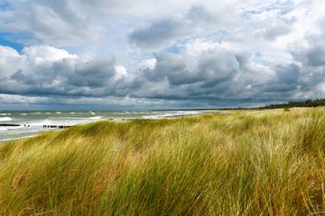 Stormy day with waves, wind and cloudy sky at the Baltic Sea of the Darss, Germany.