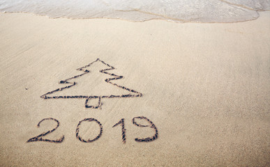 Fit tree drawing in the sand .Text 2019 on a caribbean beach sand.