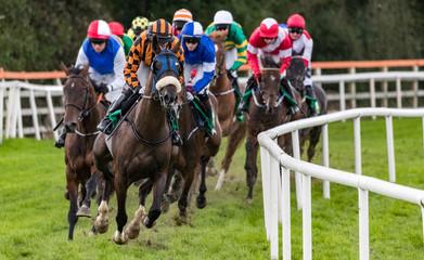 Horse racing gallop