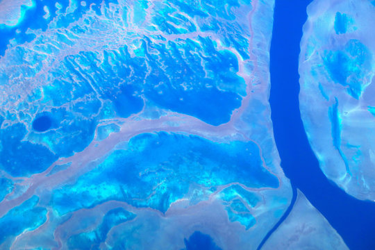 Coral reefs can be seen from above on the Great Barrier Reef, located off the coast of Queensland, near the town of Rockhampton